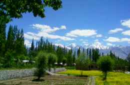 lharimo-north-cottages-and-camps-nubra